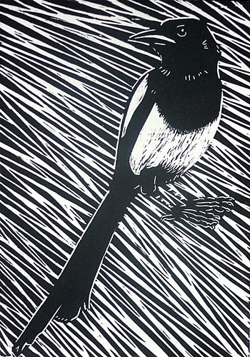 Diagonal Magpie.  Linoprints birds