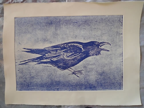 Blue Raven.  Linoprints birds