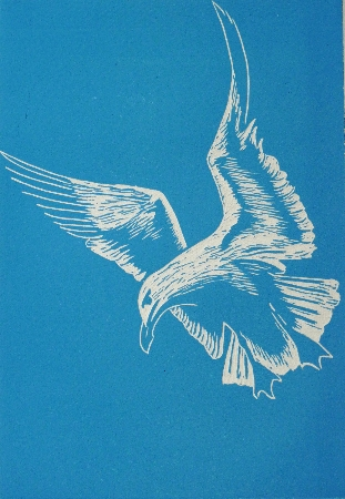 Bristol Blue Gull.  Linoprints.birds