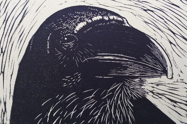 Crow Head.  Linoprints birds