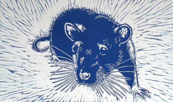Blue Rat.  Linoprint