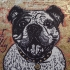 British Bulldog. Linoprint