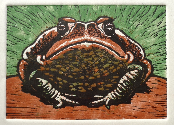 The Toad of Irony (green)
