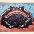 The Toad of Irony (blue)